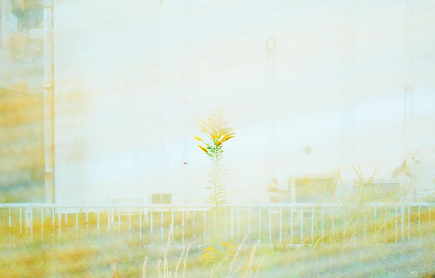 snap_0158-1
